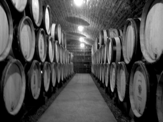 cellar aisle