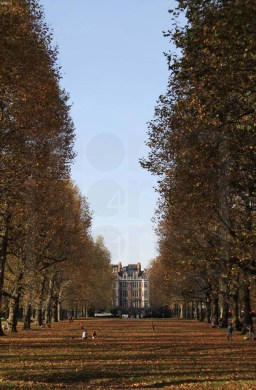 Green Park view